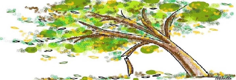 Pensez à entretenir vos arbres