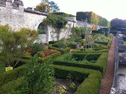 terrasse jardin plantes médicinales